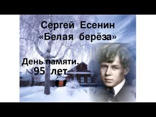 С.А. Есенин. Белая Берёза. ДеньПам95  201228