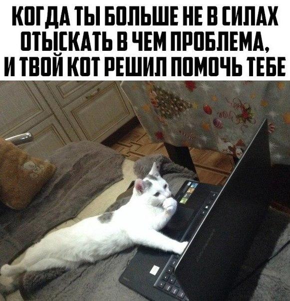 Фото №456254087 со страницы Сергея Малюкина