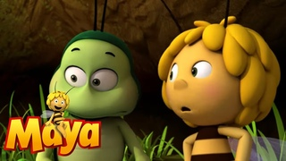 Willy Loses His Memory - Maya the Bee - Episode 54