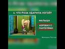 Мульт-герой в нашем городе Барбоскины