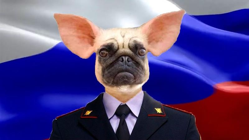 MUSOROVIRUS MOVID 19 в Кемерово следственный комитет нарушает закон и превышает полномочия