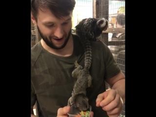 Михаил Григорье в контактном зоопарке в Жар Птице 🐵🐒🐶🐕🐩🐺🐱🐈🦁🐯🐅🐆🐴🐎🦄🐮🐂🐃🐄🐷🐗🐽🐏🐑🐐🐪🐫🐘🐭🐁🐀🐹🐰🐇🐿🐻🐨🐼🐾🦃🐔🐓🐣🐤🐥🐦🐧🕊🐸🐊🐢🐍🐲🐉🐳🐋🐬🐟🐠🐡🐙🦀🐌🐛🐜🐝🐞🕷🦂