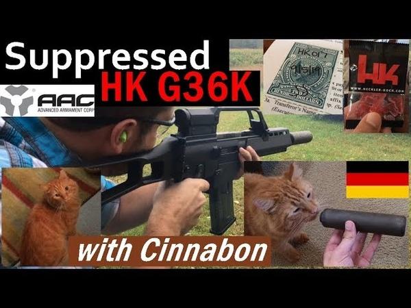 Suppressed HK G36K with Cinnabon