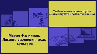 "Лекция Марии Фаликман ""Эволюция, мозг, культура"""