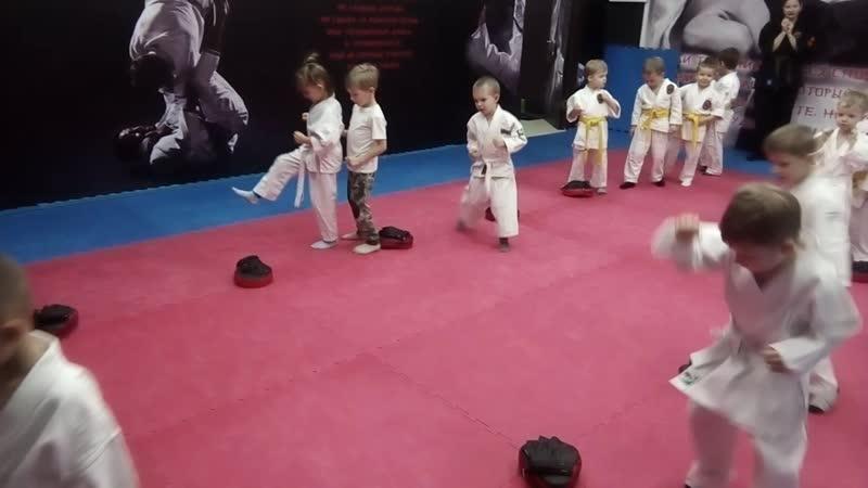 Комплексная тренировка единоборствами с детьми 4-5 лет. Ч.1.