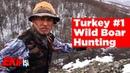 Wild Boar Hunting Turkey 1 Team Work охота на кабана صيد الخنازير البرية