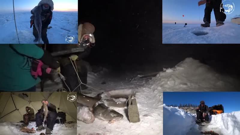 Охота на уток в Якутии. Более 30 уток с 30 выстрелов