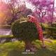 Janne Schra - I Am That Bird