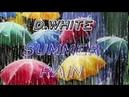 D. White - Summer rain (Teaser)
