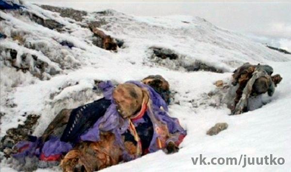Трупы людей, которые не дошли до Эвереста очень часто оставляют во льдах так и не спустив с горы...