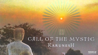 Karunesh - For the Joy of it All