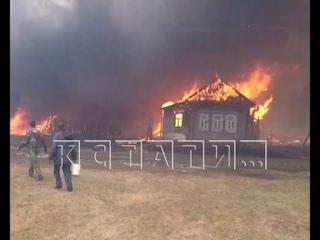 12 домов сгорели в селе Ивановское из-за травяного пожара