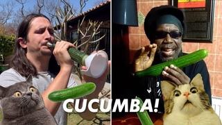 Macka B X The Kiffness - Cucumba (Cucumber Rap) [Live Looping Remix]