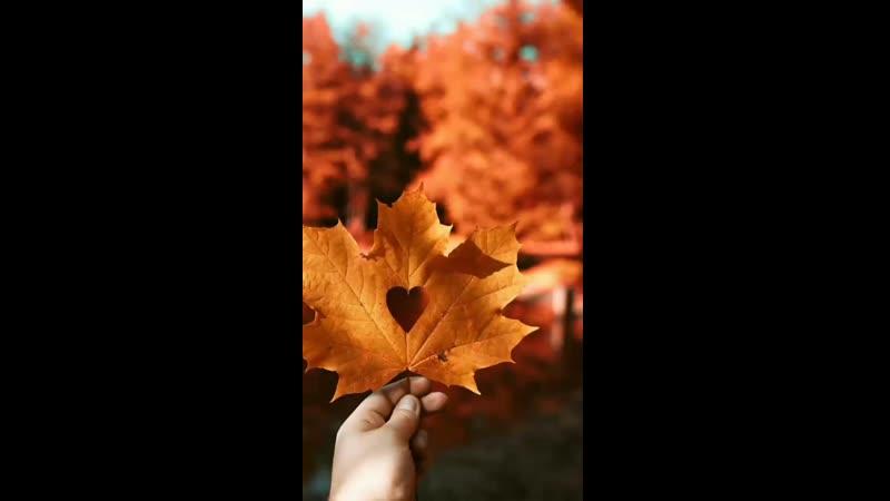 Осень на Каме