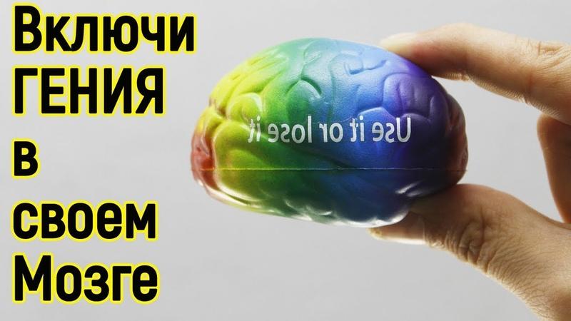Эти 10 секретов мозга помогут стать тебе Миллионером и даже Гением Как стать умнее и развить мозг