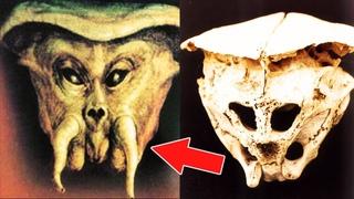 Удивительные находки археологов, которые опровергают историю. Самые необычные раскопки