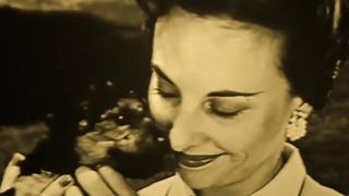Tomahawk - Dog Eat Dog (Official Video)
