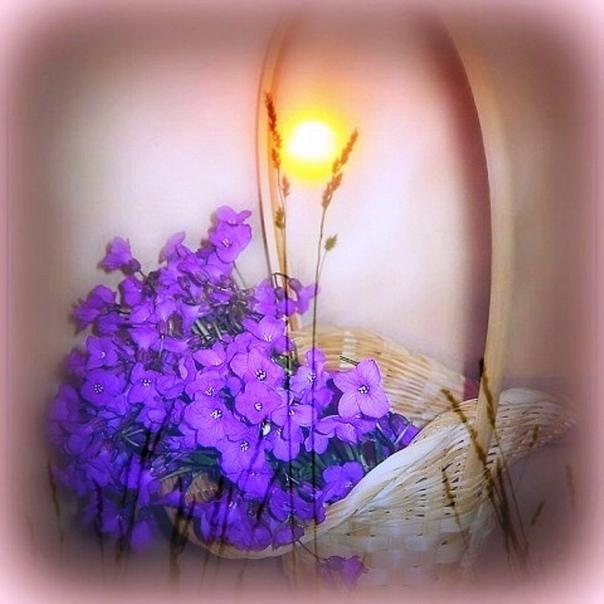 Что бы ни случилось, верь в себя, верь в жизнь, верь в завтрашний день, верь во все, что ты делаешь, всегда С добрым