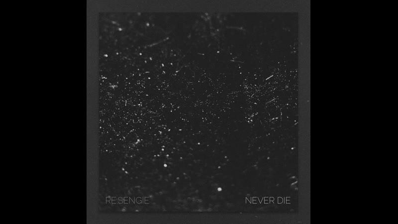 Re Sengie Never Die