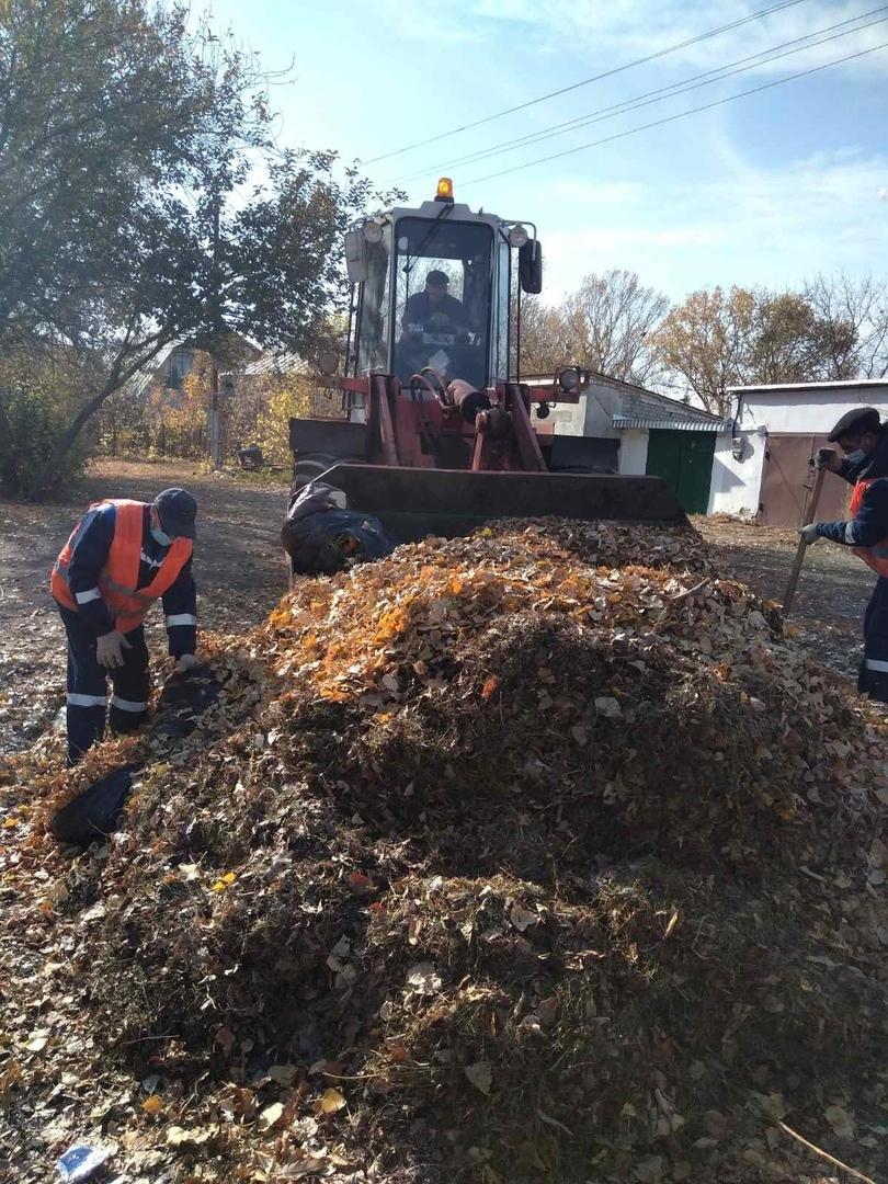 Городская коммунальная служба просит петровчан при уборке территорий собирать опавшую листву в мешки