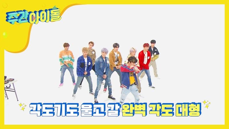 NCT 127 Weekly Idol 안무구멍X 동선 맛집 엔시티의 각도기급 대형 정리 l EP.453