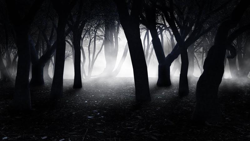 Spooky Fantasy Music – Night Shadows | Forest, Enchanting, Mystical