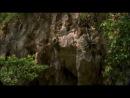 ВВС Дикие Карибы Фильм 1 Острова сокровищ