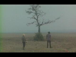 разговор с воронами отрывок из фильма Укрощение строптивого