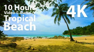 4K UHD 10 hours - Beach, Lapping Waves, Birds Singing - mindfulness, relaxing, meditation, nature