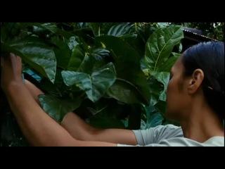 The Orator (2011) Doblaje Vose Género Drama Sinopsis Saili es un humilde campesino que vive con su bella