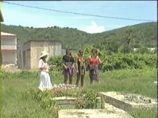 Остров сокровищ  1993 treasured island