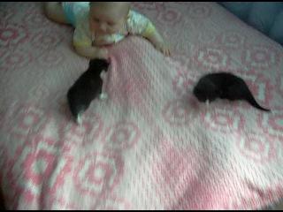 Анюта (6 месяцев) и котята (3 недели)