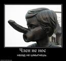 Личный фотоальбом Антона Старобинца