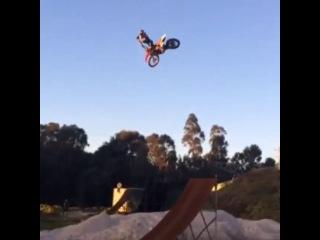 Whip Josh Sheehan