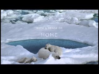 Coca-Cola Arctic Home 2012 - Help Polar Bear Cubs