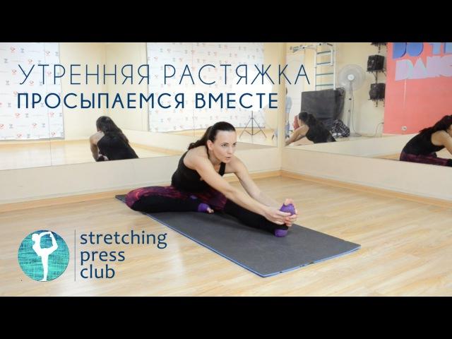 Утренняя растяжка Просыпаемся вместе с Stretching Press Club