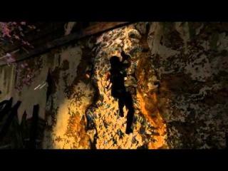 Брейн проходит: Tomb Raider 2013 - [БОЛЬШИЕ ПОТЕРИ] #11