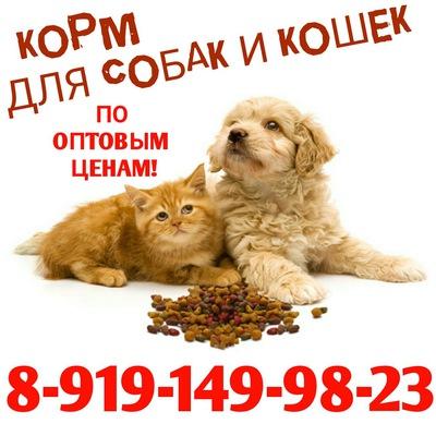 Purina Pro Plan (Проплан): корм супер премиум класса для кошек