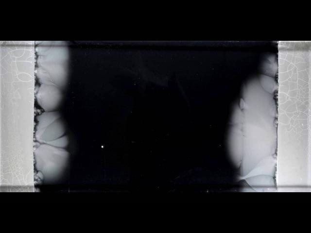 "The Evolution of Bacteria on a Mega Plate"" Petri Dish Kishony Lab"