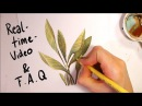 Painting a Random Watercolor Plant [REALTIME] and answering questions about style, colors