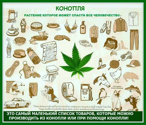 Как использовали коноплю на руси выращивание марихуаны в медицинских целях в россии