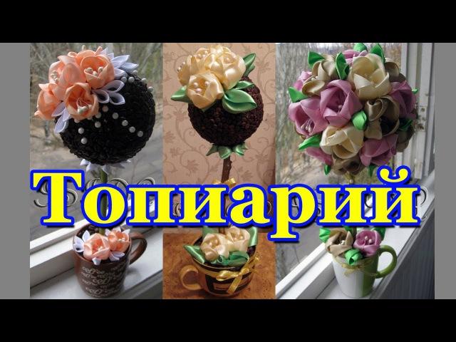 Топиарий Topiary