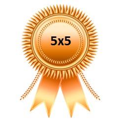 Бронзовая медаль Чемпионата 5х5