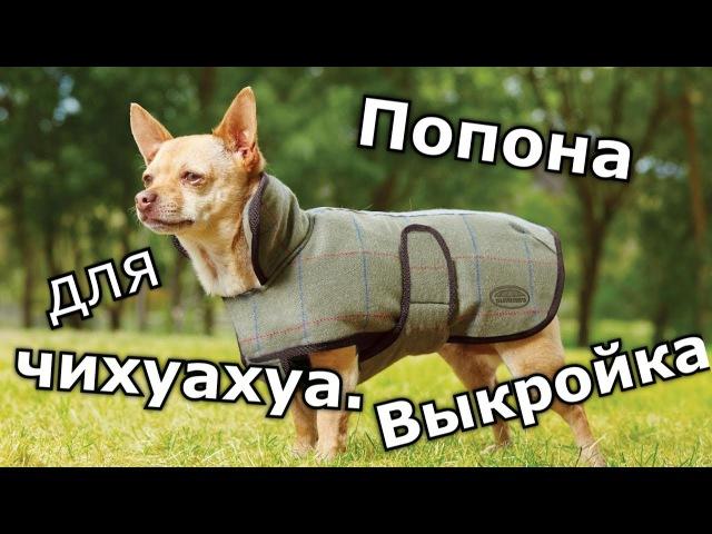 Выкройки одежды для собак Чихуахуа одежда комбинезон собака выкройка попона