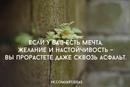 Фотоальбом Лидии Тауновой