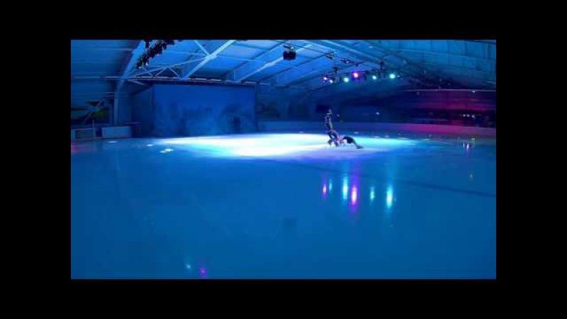 Снежная Королева . Фигуристы на роликах и коньках.