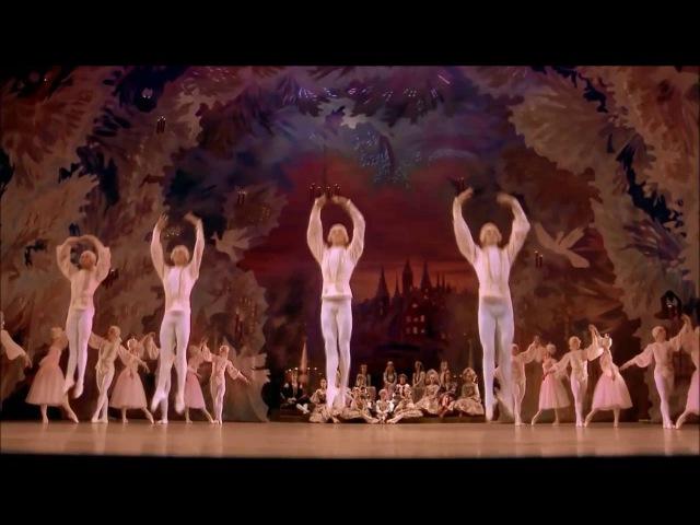 Балет Щелкунчик П И Чайковского Вальс Цветов розовый