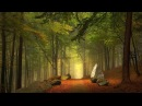 Поющий лес Пение вечернего леса Звуки природы Пение птиц релаксация уединение и расслабление