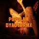 Пика - Пополам (DYADYA Remix)