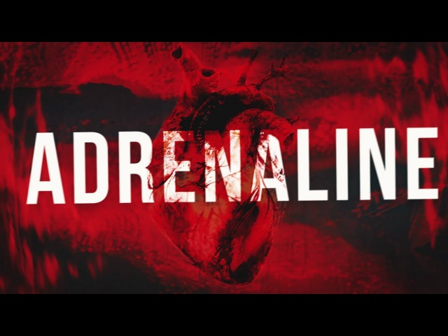 Jebroer Dutch Movement Outsiders Adrenaline Official Lyric Video